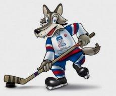 005007e3ccab1 Souhrn mistrovství světa v ledním hokeji 2011 | Český hokej