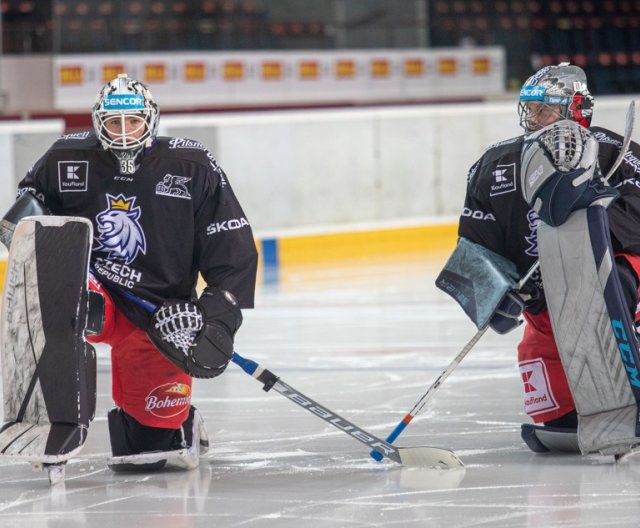 Second practice of Czech Ice Hockey Team in Prague, 6.4.2021